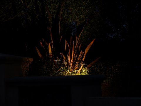 Dos Vientos Landscape Lighting Dramatic Lighting